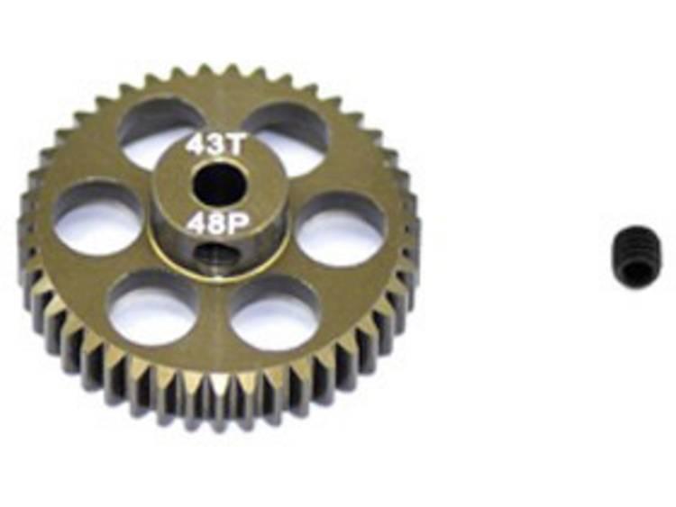 ArrowMax Motorrondsel Soort module: 48 DP Boordiameter: 3.175 mm Aantal tanden: 43