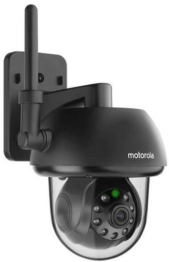 IP-camera WiFi, LAN Motorola Focus 73