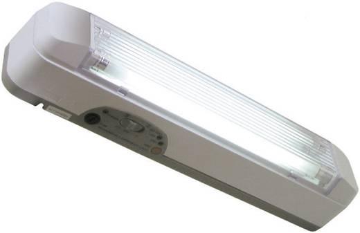 Fluo-noodverlichtingsblok