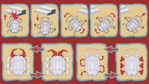 Velleman Scarab Speelgoedrobot Uitvoering (bouwpakket/module): Bouwpakket
