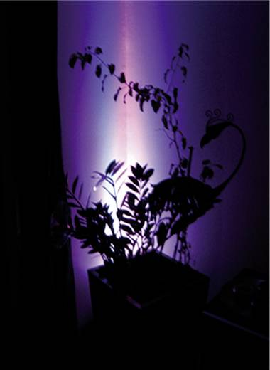 LED GU5.3 Stift 5 W (Ø x l) 48 mm x 60 mm Energielabel: A Lumihome Colorchanging, Incl. afstandsbediening 1 set