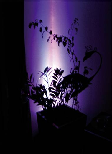 LED-lamp GU5.3 Stift 5 W (Ø x l) 48 mm x 60 mm Energielabel: A Lumihome Colorchanging, Incl. afstandsbediening 1 set