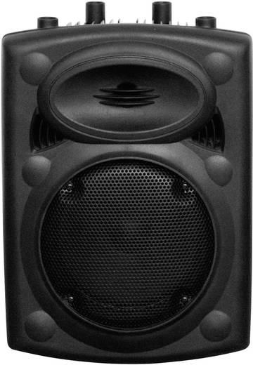 Ibiza PORT10VHF-N draagbare speaker PA 25 cm