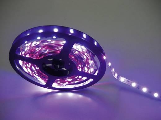 Flexibel kleuren led-verlengstuk 2,5 m