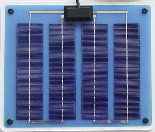 Sunset Polykristallijn zonnepaneel 5 Wp 16 V F-Lite