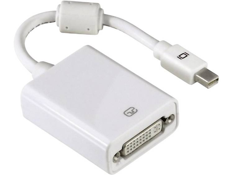 Mini-Displayport naar DVI adapter