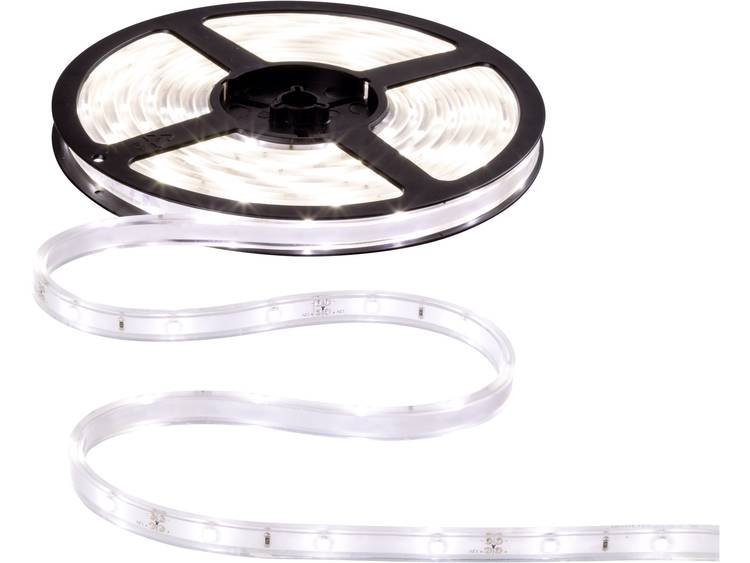 Paulmann waterdichte LED strips Neutraal wit 5 m 230 V