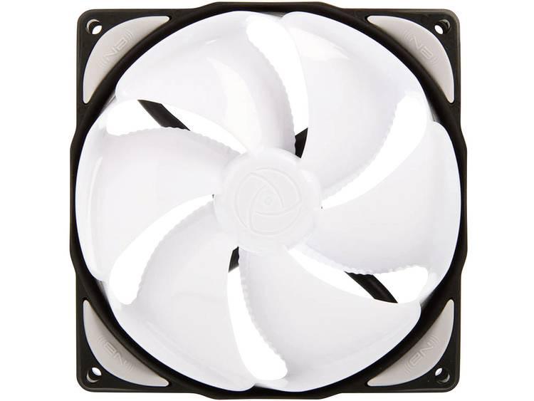 PC ventilator NoiseBlocker NB-eLoop B12-4 Wit/zwart (b x h x d) 120 x 120 x 25 mm