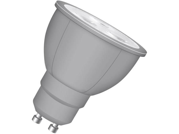 Neolux LED-lamp GU10 Reflector 4 W = 20 W 230 V-AC