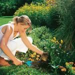Combisystem-tuinschepje breed