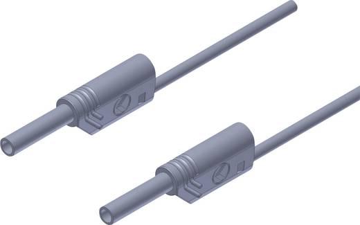Veiligheidsmeetsnoer SKS Hirschmann MVL S 100/1 Au [ Banaanstekker 2 mm - Banaanstekker 2 mm] 1 m Grijs