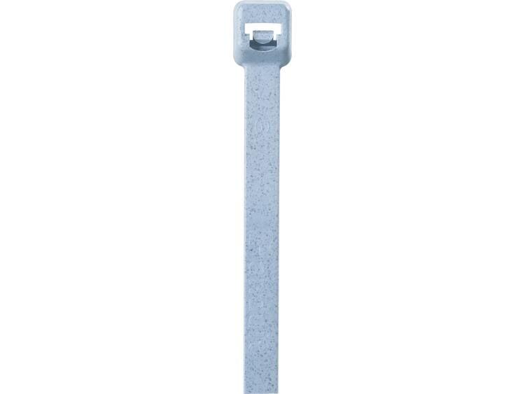 Panduit ASTN-300 PLT2S-C86 Kabelbinder 186 mm Blauw Detecteerbaar 100 stuks