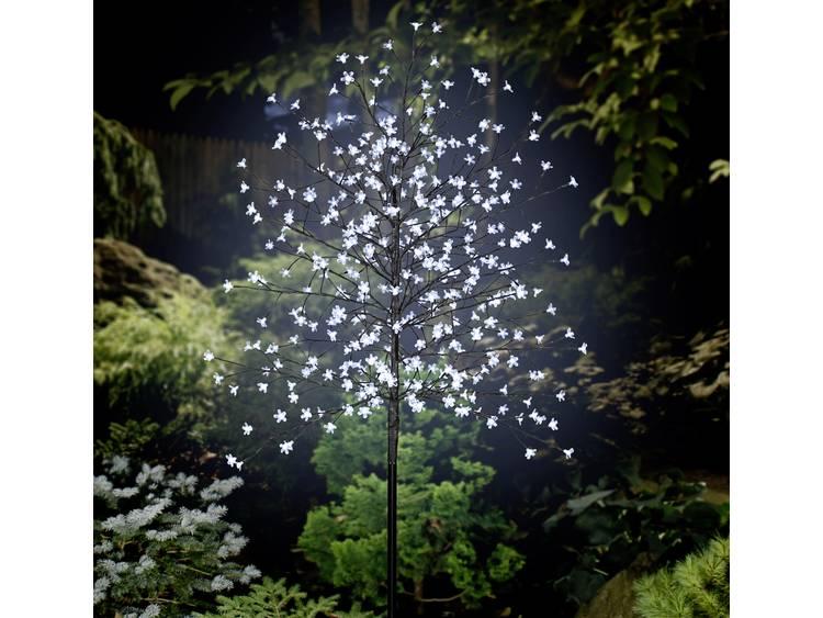 Polarlite PCA-03-003 Vloerdecoratie Boom LED Bruin