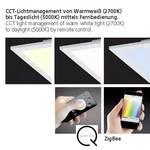 LED-panel Q-Flag
