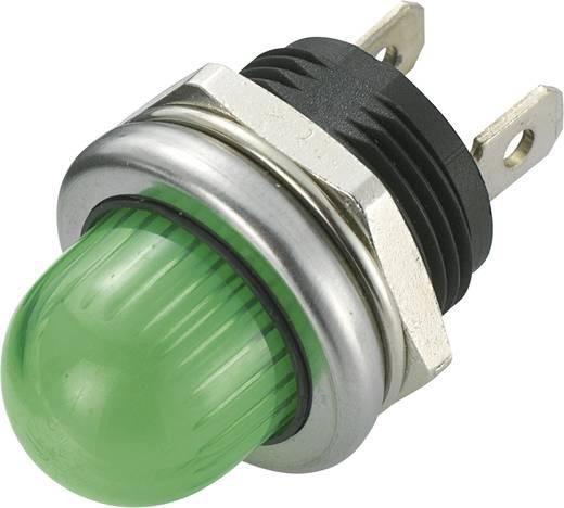SCI R9-105L1-02-WGG4 LED-signaallamp Groen 12 V/DC 20 mA