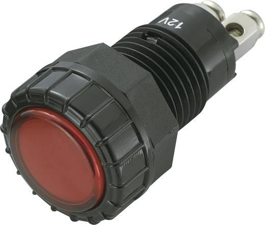 SCI R9-122L1-06-BRR4 LED-signaallamp Rood 12 V/DC 20 mA