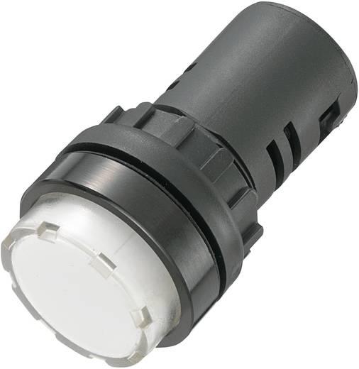 AD16-22ES/12V/W LED-signaallamp Wit 12 V/DC, 12 V/AC 20 mA