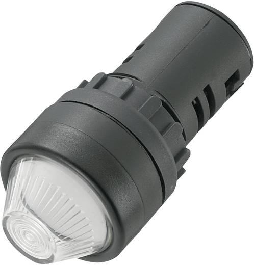 AD16-22HS/12V/W LED-signaallamp Wit 12 V/DC, 12 V/AC 20 mA