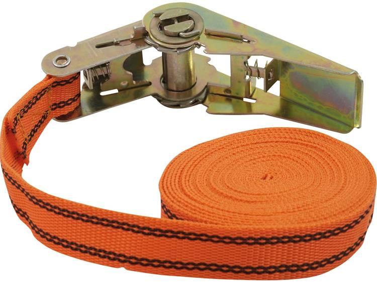 Spanband (eendelig) Trekkracht (lc) vastbinden (enkel direct)=125 daN (l x b) 5 m x 25 mm Petex 43192635