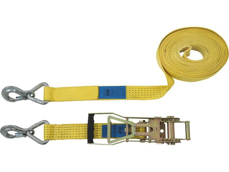 Spanband (tweedelig) Trekkracht (lc) vastbinden (enkel direct)=2500 daN (l x b) 10 m x 50 mm Petex 43193119