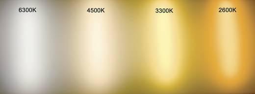 LED-strip Warm-wit met open kabeleind 12 V 16.8 cm 150716