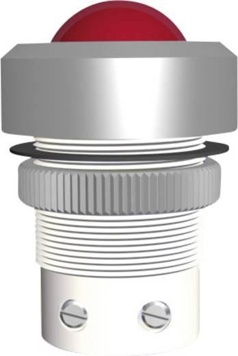 Signal Construct SMTD22634 LED-signaallamp Wit 24 V/DC, 24 V/AC 20 mA