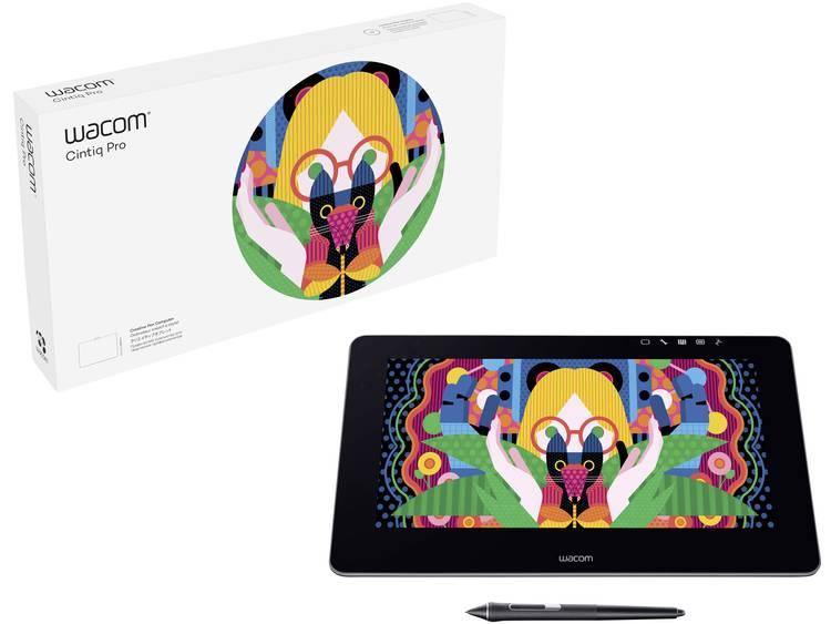 Wacom Cintiq Pro 13 FHD Grafisch USB-tablet Zwart