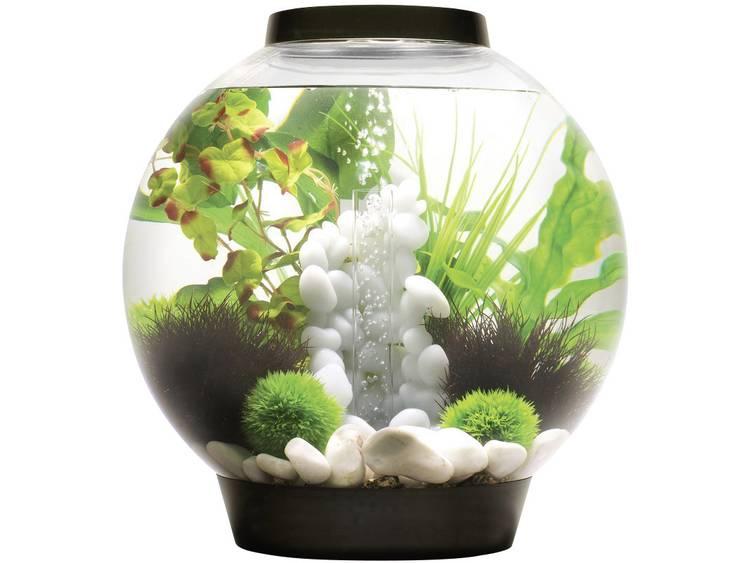 Oase 45664 Aquarium 30 l Met LED-verlichting