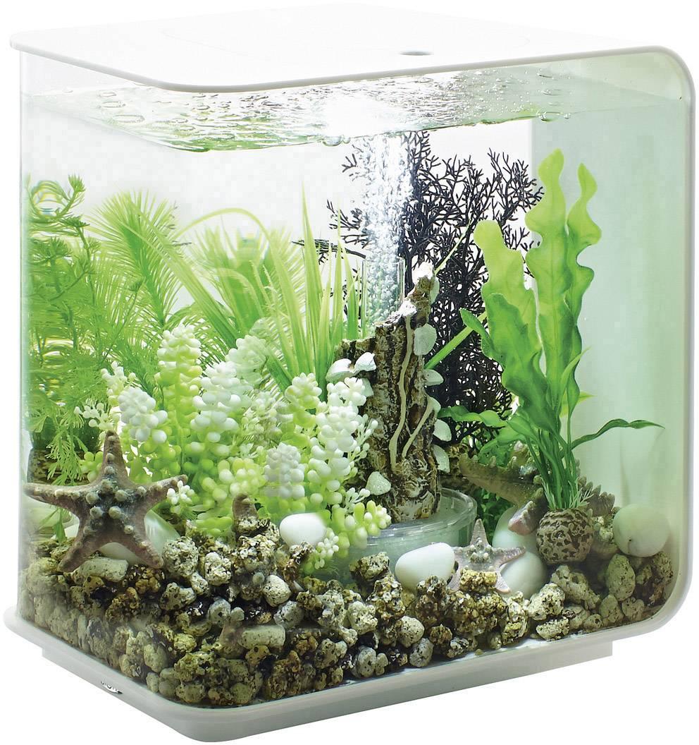 Oase 45915 Aquarium 15 l Met LED-verlichting | Conrad.nl