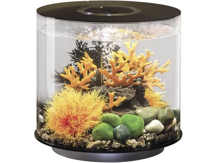 Oase 45940 Aquarium 15 l Met LED-verlichting