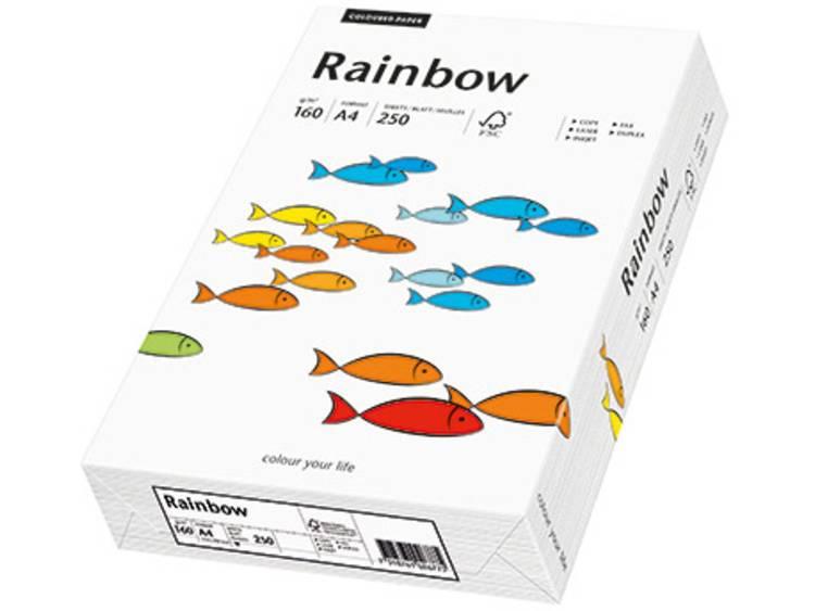Printpapier Papyrus Rainbow Color A4 88042209 DIN A4 160 g/m² 250 vellen Wit