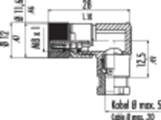Binder 99-3378-00-04 Sensor-/actorstekker M8, schroefsluiting, haaks Aantal polen: 4 Inhoud: 1 stuks