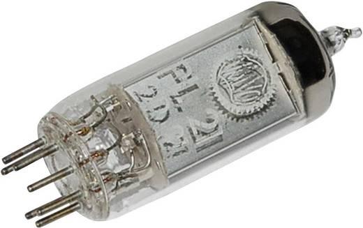 Elektronenbuis PL 21 = 2 D 21 Thyratron 650 V 500 mA Aantal polen: 7 Fitting: B7G Inhoud 1 stuks