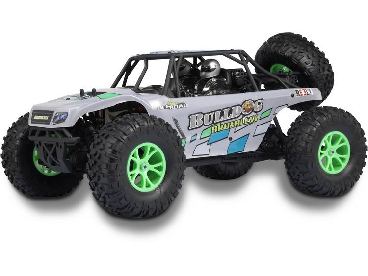 Reely Bulldog 2S 1:10 Brushless RC auto Elektro Buggy 4WD RTR 2,4 GHz