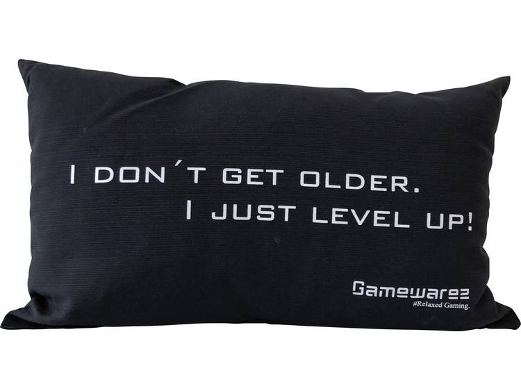 GAMEWAREZ I DONNT GET OLDER. I JUST LEVEL UP! Kussen Zwart