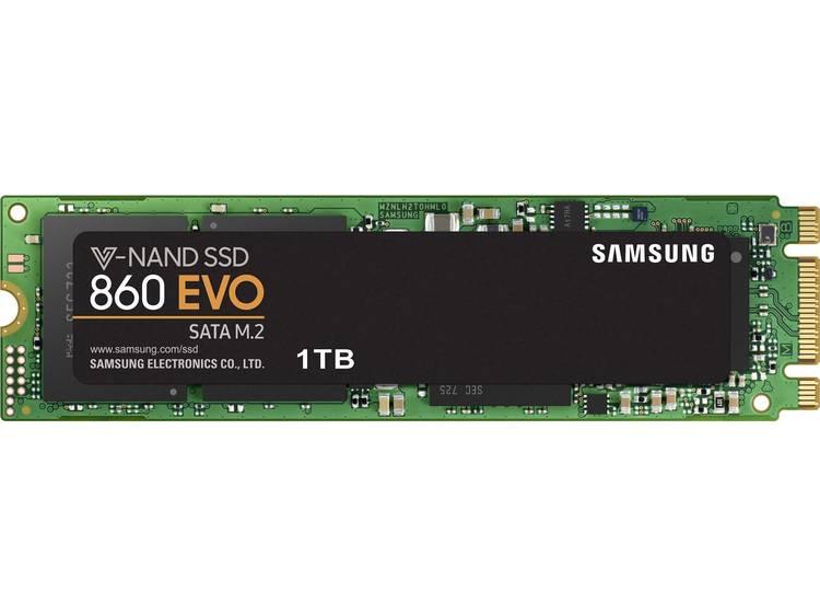 SATA M.2 SSD 2280 harde schijf 1 TB Samsung 860 EVO Retail MZ-N6E1T0BW M.2