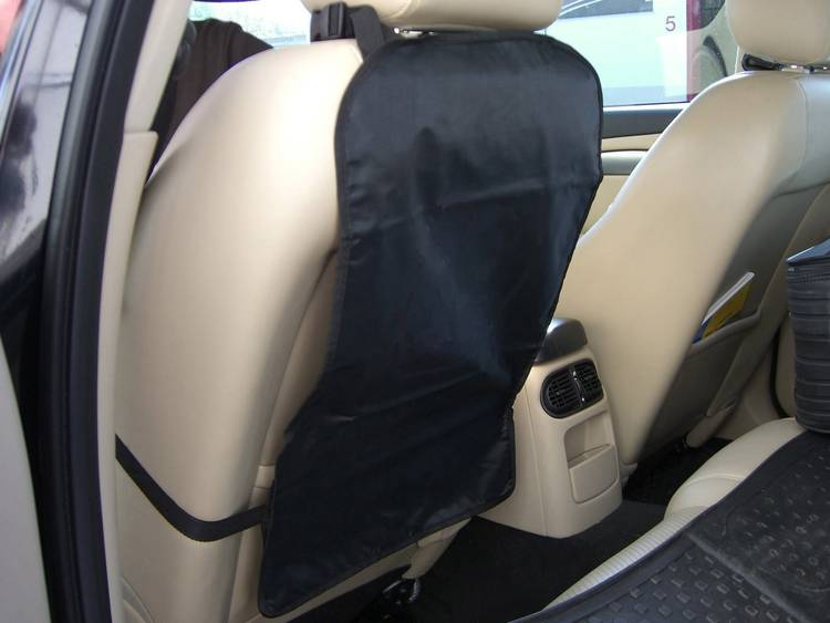 Rugleuninghoes Rücklehnen Schutz SW Neutral Zwart HP Autozubehör