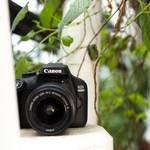 Canon EOS 4000D set – spiegelreflexcamera – 18 MP – display: 6,86 cm/2,7