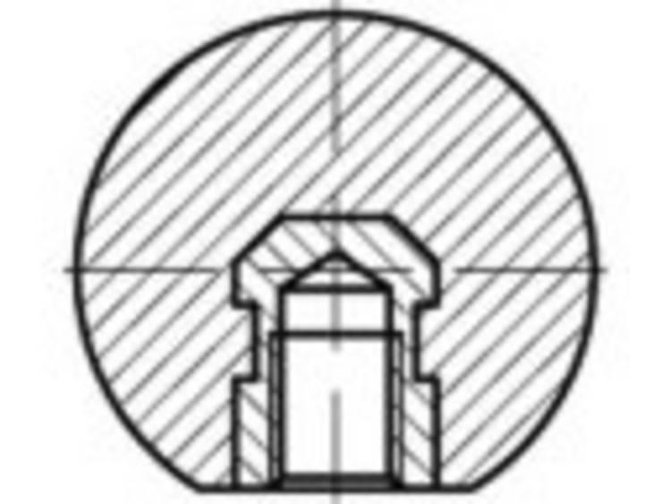 TOOLCRAFT DIN 319 kunststof-E-MS zwart kogelknoppen, E met schroefdraad bus messing afmeting: 16 M 4 25 stuks