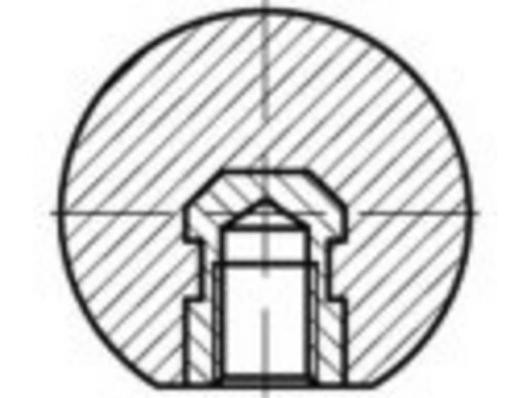 TOOLCRAFT TO-5447589 DIN 319 kunststof-E-MS zwart kogelknoppen, E met schroefdraad bus messing afmeting: 50 M 12 N/A 10 stuks
