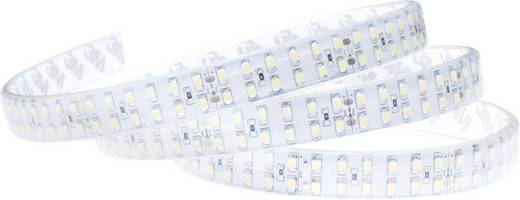 LED-strip Koud-wit met soldeeraansluiting 24 V 500 cm ledxon High-power double SMD-band IP65 9009052