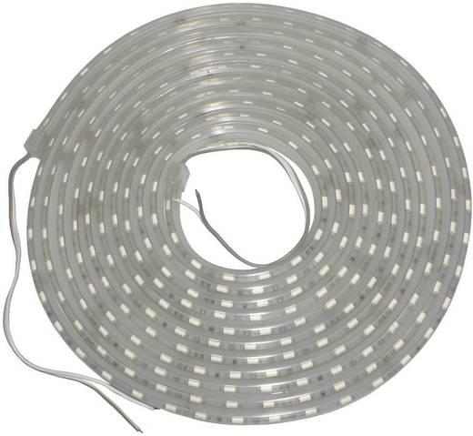 24V/DC LED-strips 5 m met siliconenmantel IP66