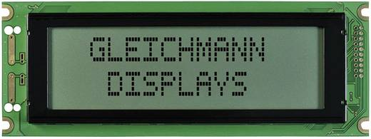Gleichmann GE-G24064A-TFH-VZ/R Grafisch display Wit Zwart (b x h x d) 180 x 65 x 12.3 mm