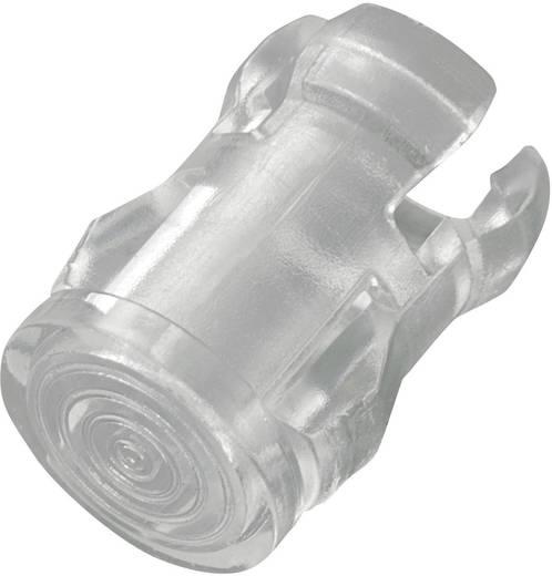 183117 Verlichtingskap Transparant Geschikt voor LED 5 mm