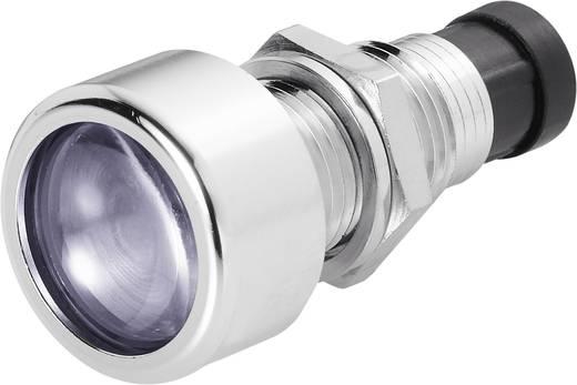 Signal Construct SML1089 LED-fitting Metaal Geschikt voor LED 5 mm Schroefbevestiging