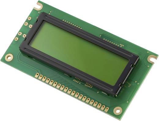 LM042-13A Grafisch display Groen Geel-groen (b x h x d) 89 x 44 x 13 mm