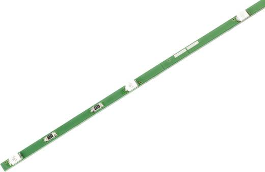 LED-strip Blauw met open kabeleind 12 V 33 cm Conrad Components H033M470nmCTC 187782