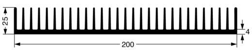 Strengkoellichaam 1.2 K/W (l x b x h) 200 x 100 x 25 mm Fischer Elektronik SK 42 100 SA