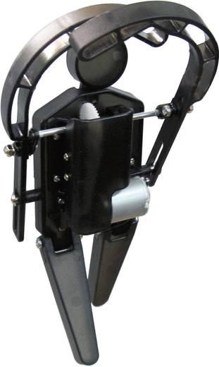 Arexx WTR-RD2 Dansrobot bouwpakket Uitvoering (bouwpakket/module): Bouwpakket