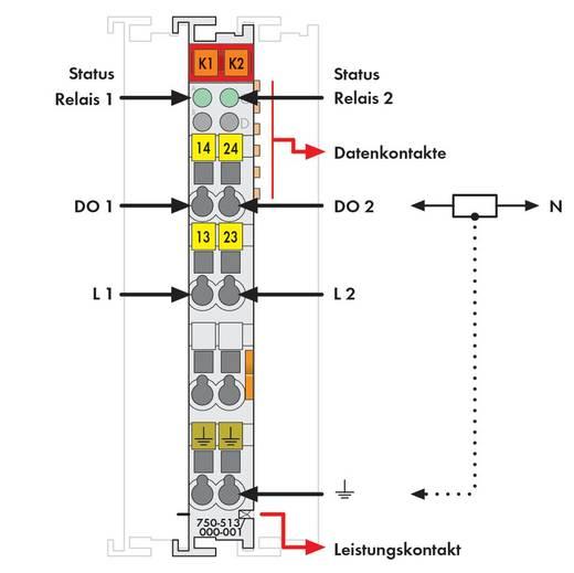 WAGO 750-513/000-001 PLC-uitgangskaart 30 V/DC, 230 V/AC